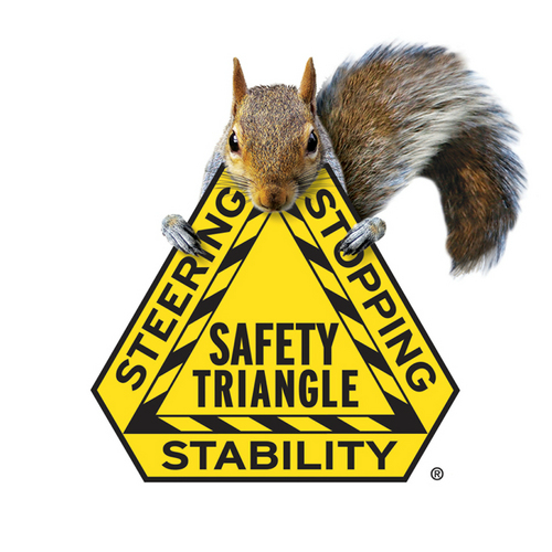 Safety Triangle. Steering, Stopping, and Stability